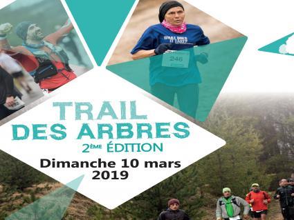 Trail des arbres 11 mars